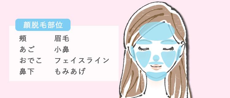 顔の脱毛部位8つ