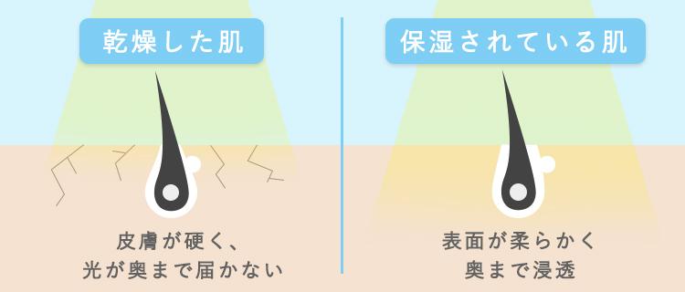 乾燥肌と保湿されている肌の違い
